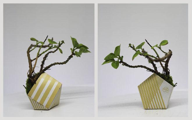 Origami plant pot